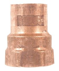 Elkhart  1 in. Dia. x 1 in. Dia. Copper To FTP  Copper  Pipe Adapter