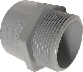 Cantex  1 in. Dia. PVC  Male Adapter