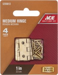 Ace  1 in. L Medium Hinge  Polished Brass