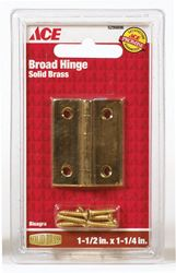 Ace  1-1/2 in. W x 1-1/4 in. L Broad Hinge  Polished Brass