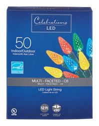 Celebrations  LED C6  LED  Light Set  Multicolored  12.25 ft. L 50 lights